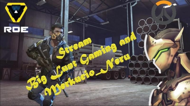 Stream Big Lunt Gaming Overwatch