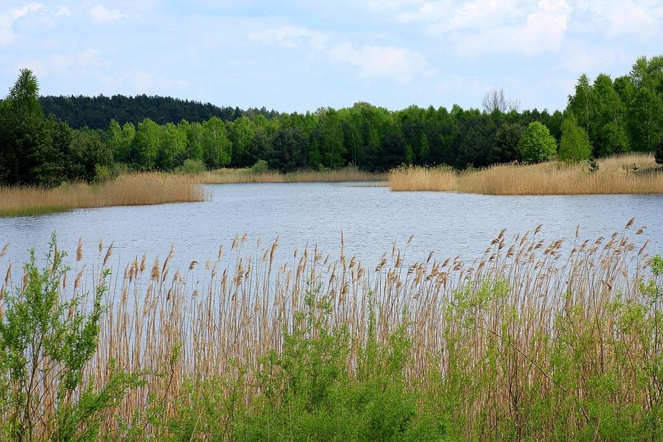 В Волжске определен список мест, где можно и нельзя купаться