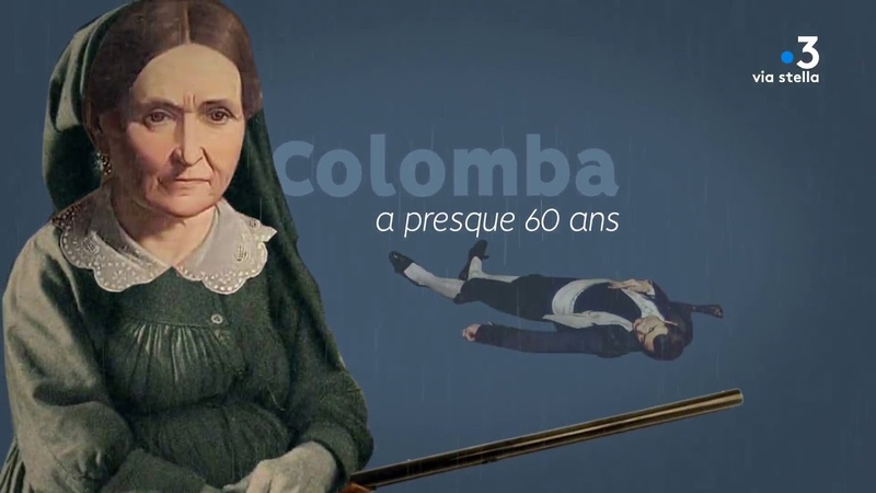 Clin d'œil - Colomba