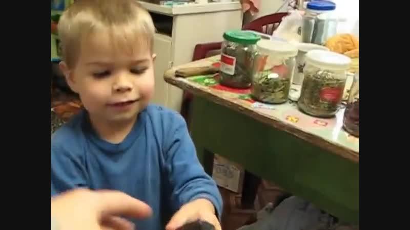 Семья Бровченко Как легко научить ребенка считать или Бытовая математика