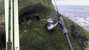 Sea fishing Best entry level Lure fishing rod the Favorite Cobalt CBL902M