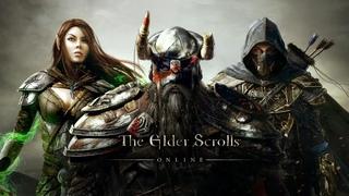 The Elder Scrolls Online Смотрим на игру глазами новичка/Утята снова в деле
