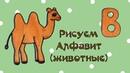 Рисуем алфавит с животными. Как нарисовать верблюда Уроки рисования для детей. Выпуск 9