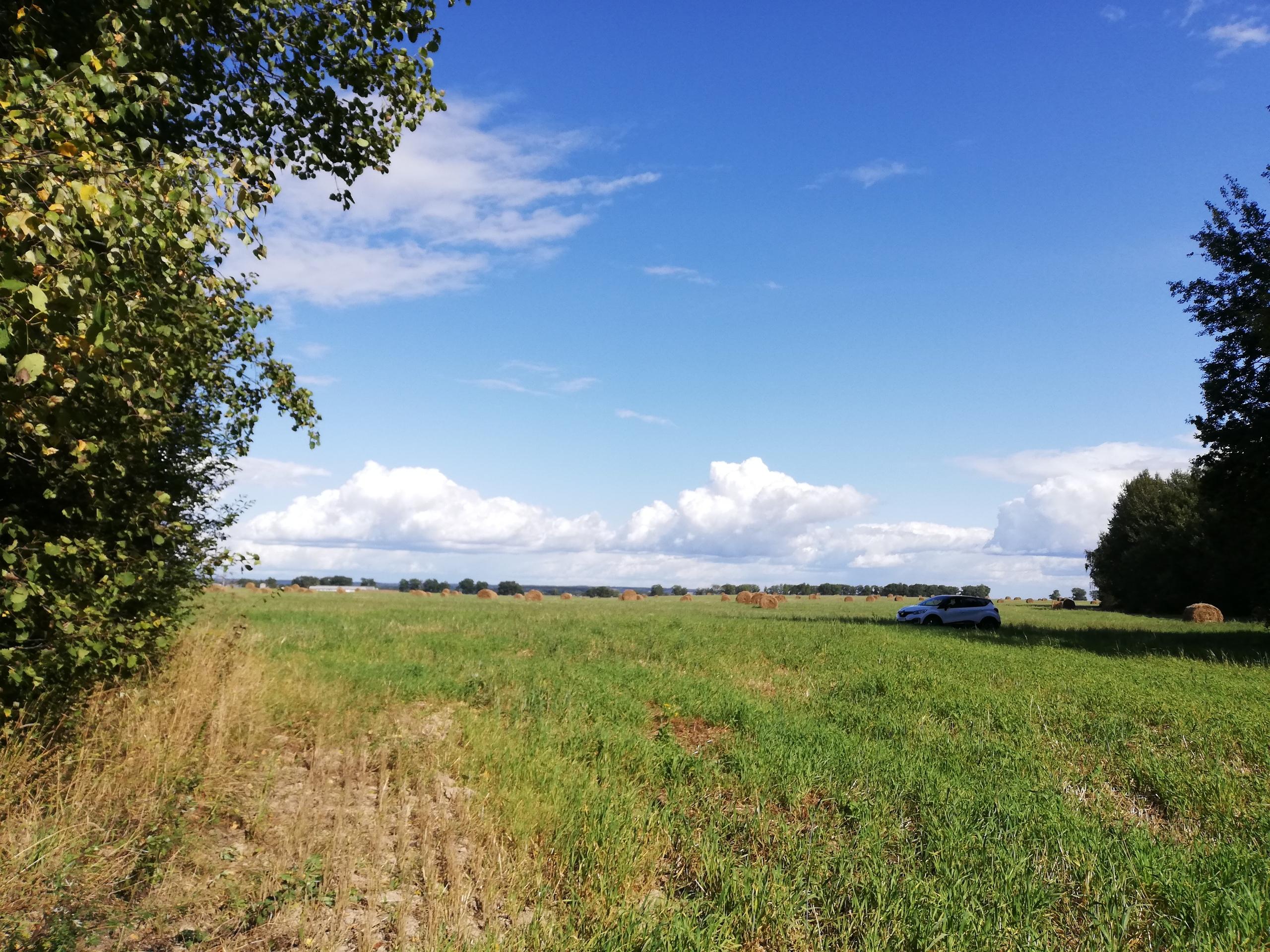 Здесь раньше был хутор, где жила семья моего деда, пока его не раскулачили Беларусь,the real story,#яостаюсьдома,СССР