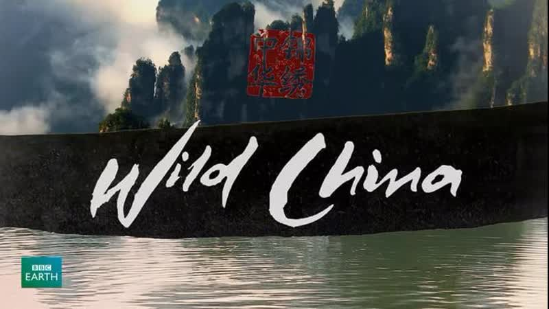 BBC: Дикий Китай 2 серия - Шангри-Ла