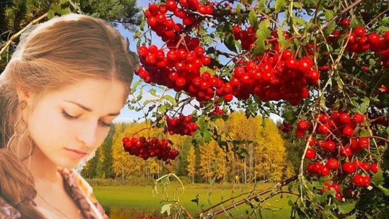 Осенняя грусть - Мишель Легран (саксофон)