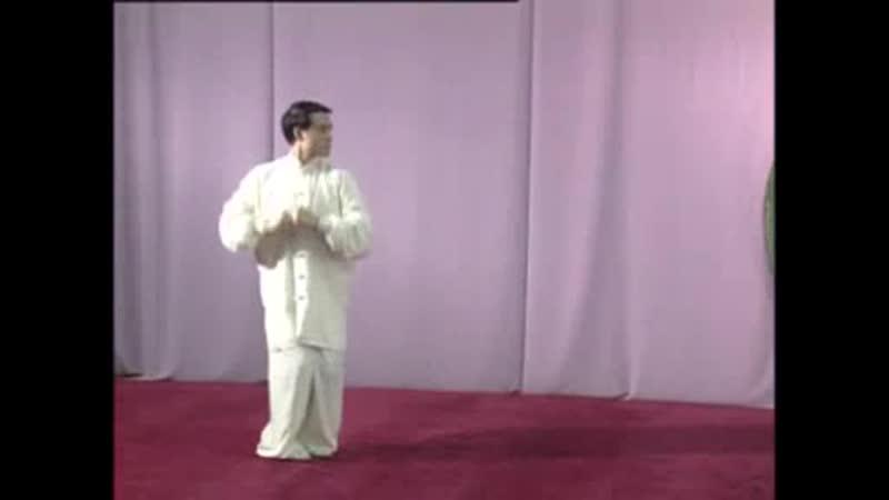 金刚八式 Xingyi quan Jingangbashi form (SD)