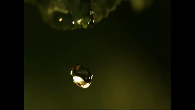 Когда плачет душа...-автор слов- Фиона Мь. Музыка- Yiruma Falling-_HIGH.mp4