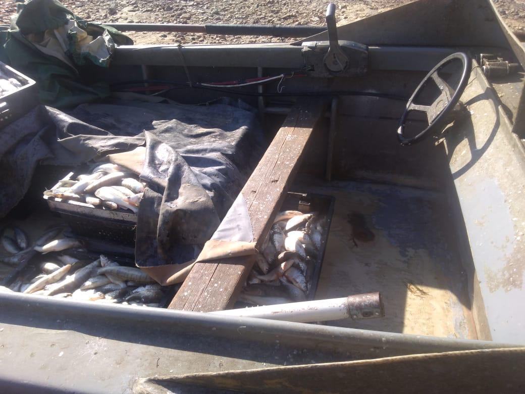 В Таганроге пограничники задержали браконьеров с уловом на сумму более 7 млн. рублей. ВИДЕО