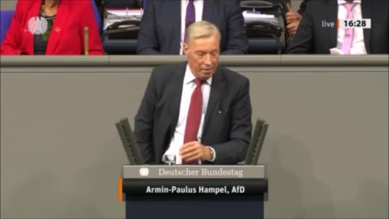 Armin-Paulus Hampel (AfD) Europa spielt in Syrien keine Rolle