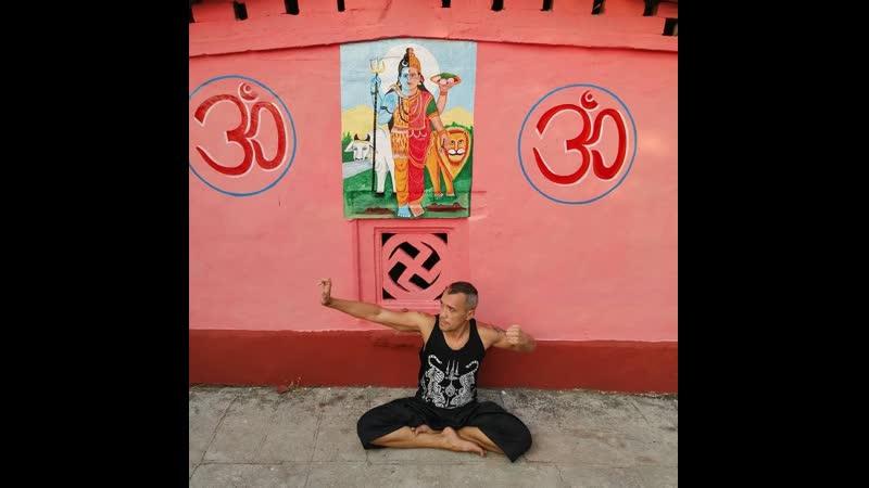 Йога. Комплекс Бодхидхармы. Школы Дхарма Марга и Тришула Артс.