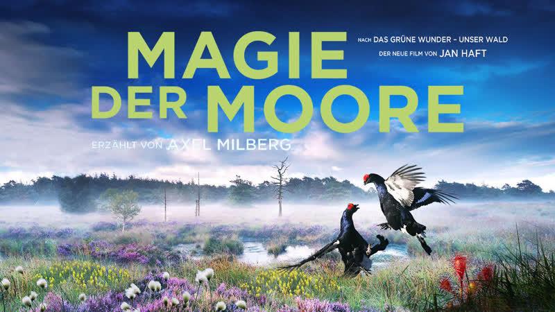 Магия болот / Magie der Moore / 2015 / Жан Хафт