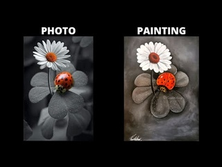 STEP by STEP acrylic painting on Canvas for Beginners   BLACK and WHITE   Color Splash art Lady Bug