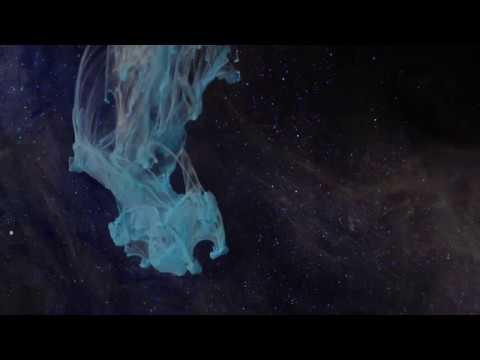 Amon Tobin - Velvet Owl (Music Video)