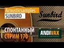 AV CC 170 - Acousticsamples SUNBIRD РОЗЫГРЫШ ЛИЦЕНЗИИ