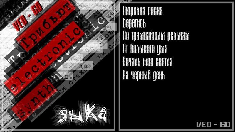 Янка Дягилева Трибьют electronic synth VED GO