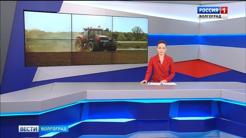 Вести-Волгоград. Выпуск 29.08.19 (14:25)