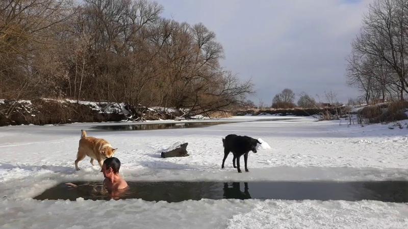 Winter swimming Ice water swimming.Экстрим Закаливание Моржевание.Extreme hardening