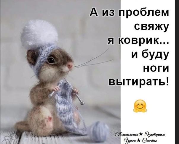 ЮМОР ДНЯ
