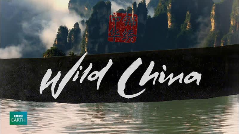 BBC Дикий Китай 4 серия По ту сторону стены