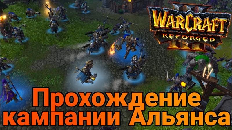 Убиваем Кел'Тузада Прохождение кампании альянса четвертой и пятой главы WarCraft III Reforged