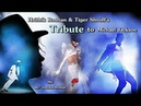 Hrithik Roshan and Tiger Shroff 's Tribute to Michael Jackson VM This is it Sonu Nigam