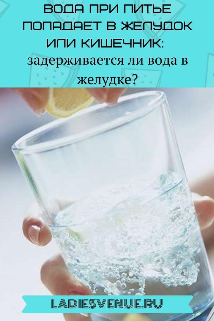 Вода при питье попадает в желудок или кишечник: задерживается ли вода в желудке