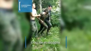 Прохожие спасли мужчину, провалившегося в болото в Видном