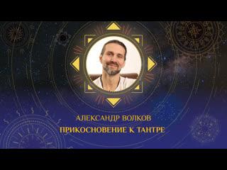 Приглашение Александра Волкова на онлайн фестиваль Энергия Солнца