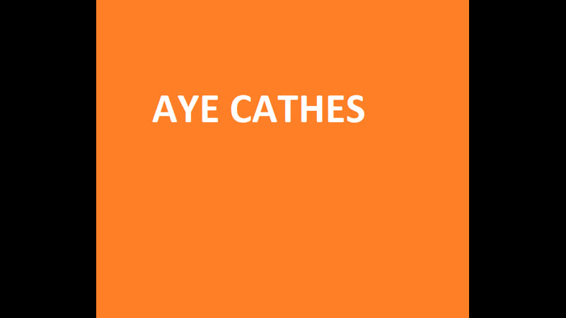 Stand aye cathes 3