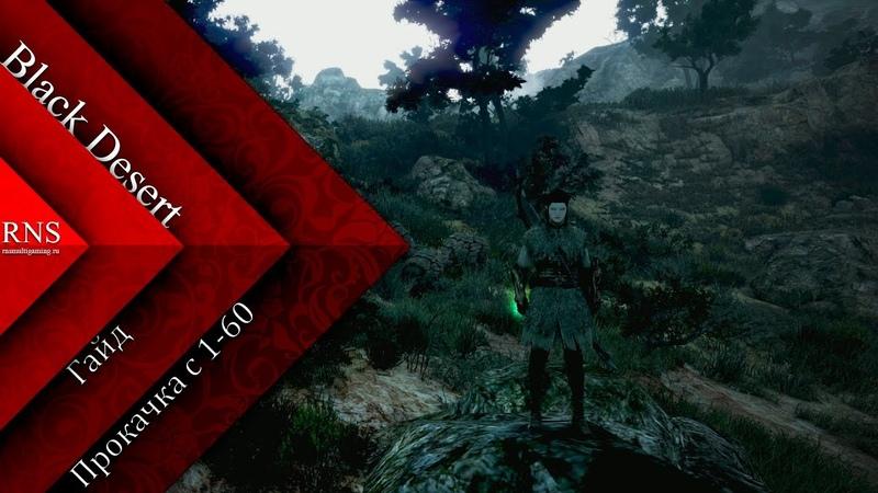 [Гайд] Black Desert - Прокачка с 1 -60 lvl MMORPG BDO RNSMultigaming GOGRad
