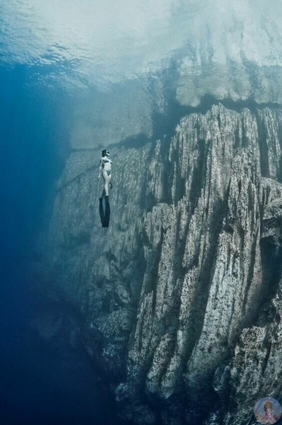 Завораживающие фотографии под водой