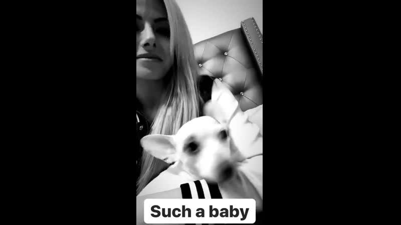 Video@alexablissdaily Обновление Instagram Story Алексы 2 5