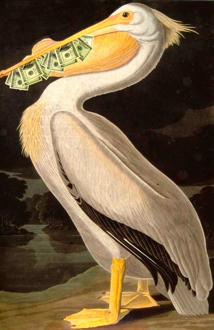 Пеликан картинки фэн шуй