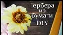 Гербера из бумаги DIY МК /Букет из конфет / Making paper flowers / Цветы из бумаги своими руками