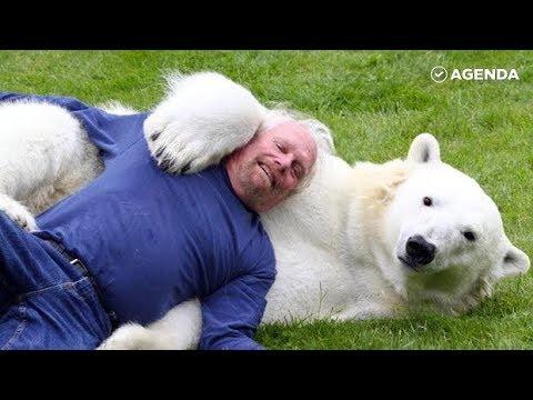 Мужчина принял в семью 500-килограммовую белую медведицу