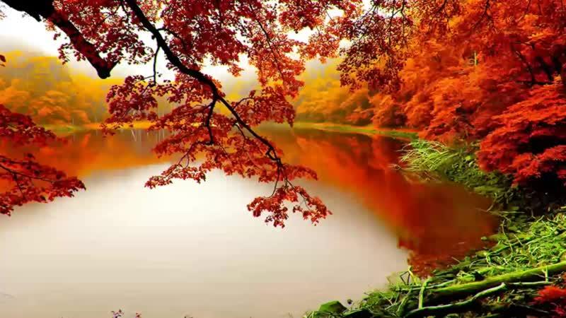 ★🌎«Le Vent, Le Cri »... Осень, Ветер, Крик...~★Ennio Morricone.★(Them from ★«Le Professionnel»).