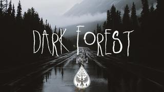 Dark Forest 🦇 - An Indie/Folk/Alternative Playlist   Vol. 2 (Halloween 2018)