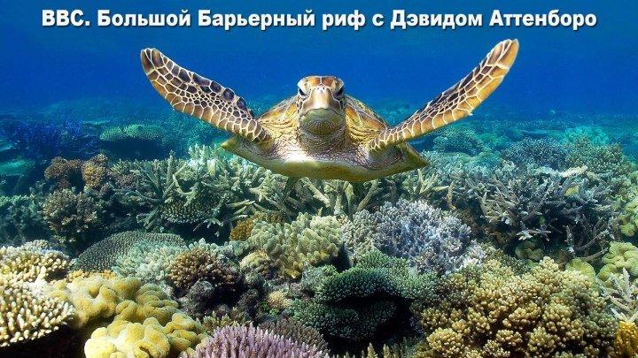BBC Большой Барьерный риф Great Barrier reef with David Attenborough 2015 Великобритания Документальный 1080 Full HD