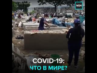 Коронавирус в мире: число инфицированных превысило 2,3 миллиона человек  Москва 24