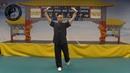 Daoyin Bao Jian Gong / Daoyin for General Health by Master Tary Yip