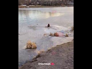 Многодетная мама спасла собаку в Мытищах