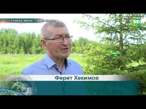 Төмән   Татарлар   03062020