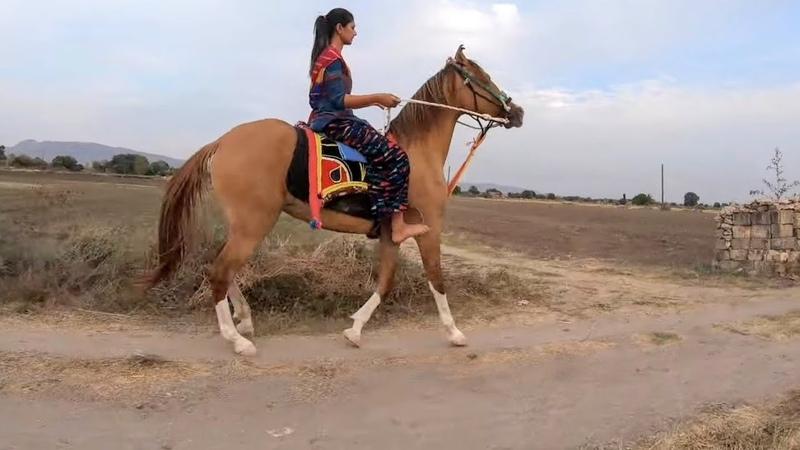 Bharti ki Shivani k saath 🏇