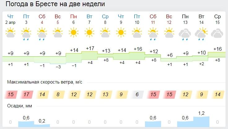 До +20°С ожидается в Беларуси в начале следующей недели