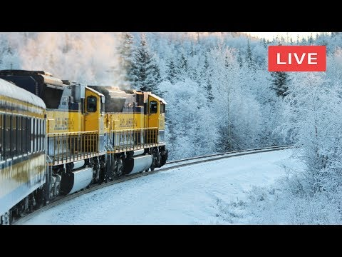 🔴 Live Train 24 7 Train Driver's View Cab Ride Winter Train Live View Front Window View