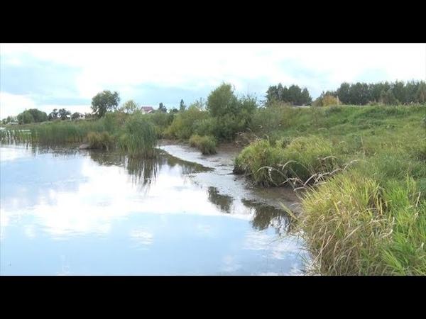 На Волге растянулись масляные пятна на несколько километров