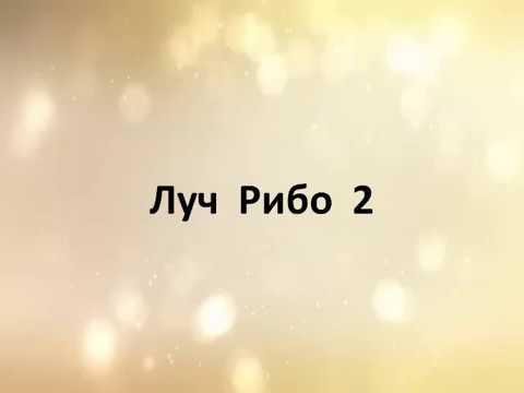 Учение Аркадия Петрова Древо Жизни Луч Рибо 2