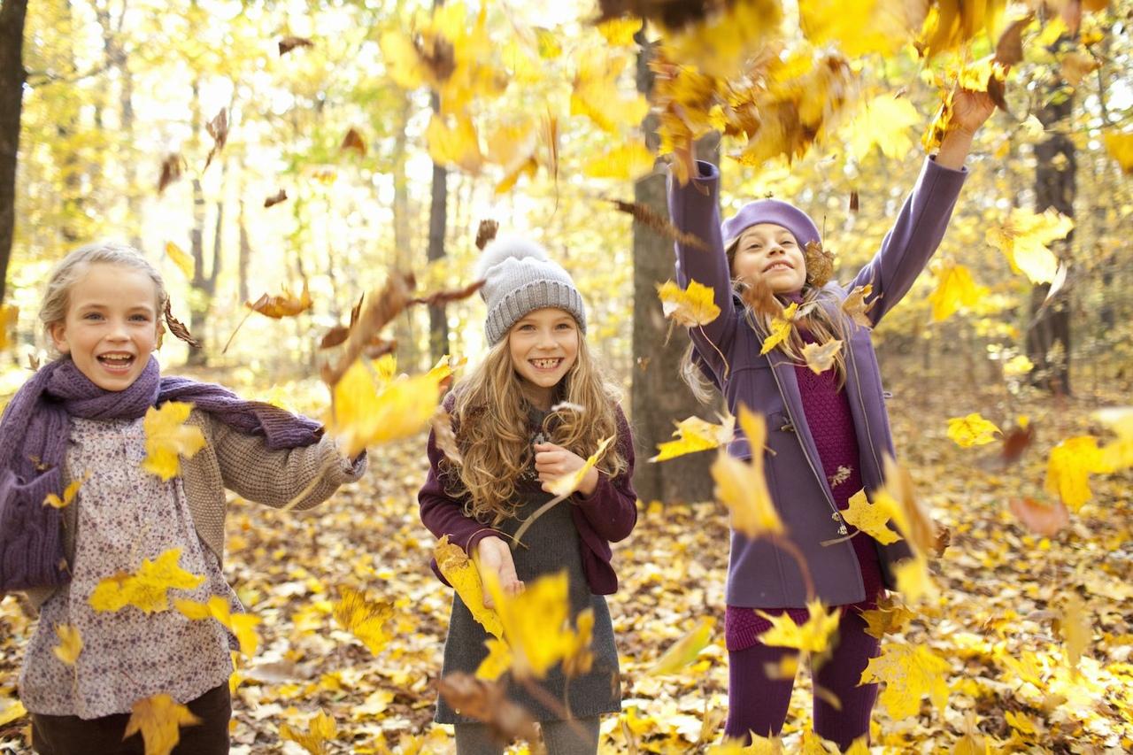 Осенние каникулы в картинках
