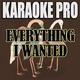 Karaoke Pro - Everything I Wanted (Originally Performed by Billie Eilish)
